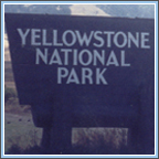 Click Here for Yellowstone National Park Photos